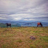 naturaleza_rutas_senderismo_cantabria_ivandiegome_27